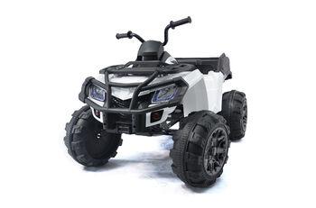 Электроквадроцикл Grizzly Next White 4WD с пультом управления 2.4G - BDM0909