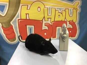 Мышка на радиоуправлении Cute Sunlight 791 (19 см)