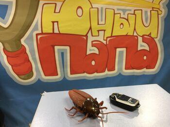 Таракан на пульте Giant Roach 85117